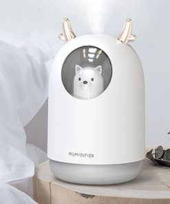 cute pert humidifier
